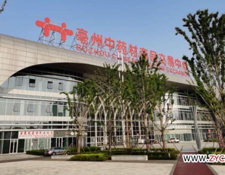 今日头条:亳州中药材市场本周部分品种点评