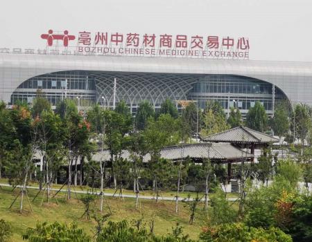今日头条:亳州中药材市场一周行情点评
