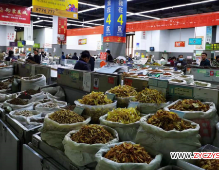 今日头条:亳州中药材市场近期品种走势