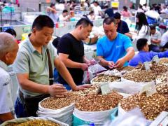 今日头条:亳州中药材市场近期部分品种走势点评