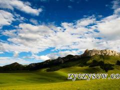 甘肃甘南藏族自治州独一味、甘松、羌活、大黄产地综述