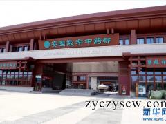 【收藏】中国十七家大型中药材批发市场